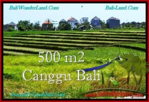 LAND FOR SALE IN Canggu Brawa TJCG192