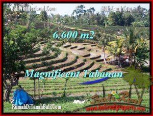 Exotic TABANAN BALI 6,600 m2 LAND FOR SALE TJTB204