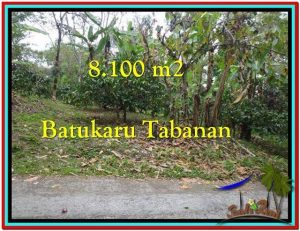 FOR SALE Magnificent 8.100 m2 LAND IN TABANAN BALI TJTB212