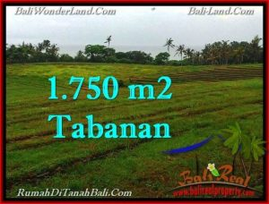Magnificent 1,750 m2 LAND IN TABANAN BALI FOR SALE TJTB262