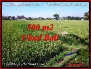 Beautiful UBUD BALI 500 m2 LAND FOR SALE TJUB545