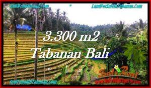 FOR SALE Affordable LAND IN Tabanan Selemadeg BALI TJTB274