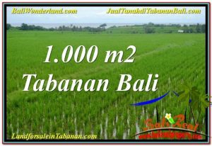 1,000 m2 LAND IN Tabanan Kerambitan BALI FOR SALE TJTB307