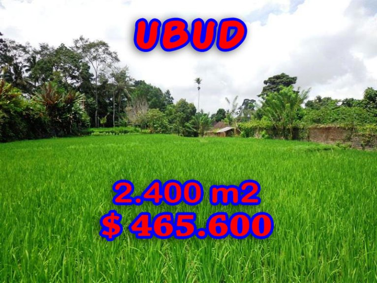 Land for sale in Ubud 2.400 m2 in Ubud Tegalalang