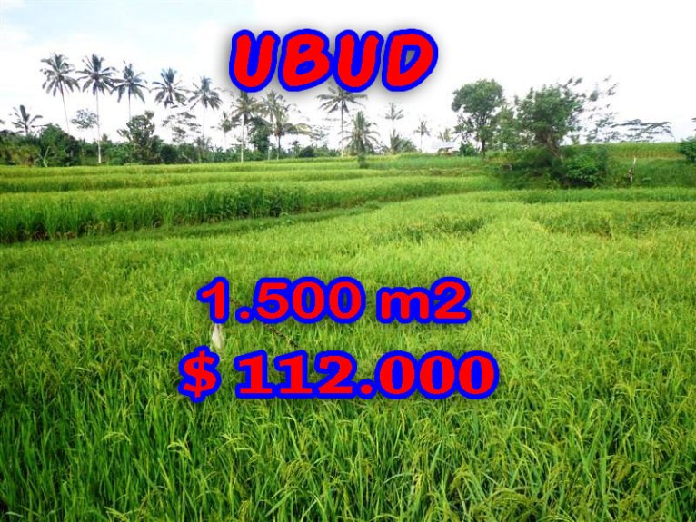 Land in Bali for sale, incredible view in Ubud Tegalalang Bali – TJUB242