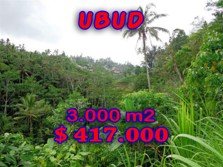 Land for sale in Ubud Bali 30 Ares with Paddy view and river valley