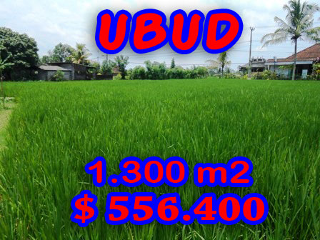 Land for sale in Ubud Bali  nice view in Ubud Center