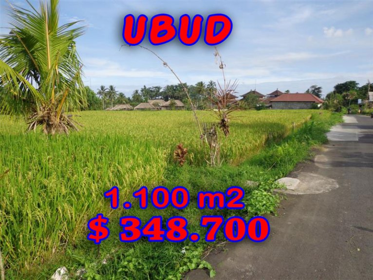 Land for sale in Ubud Bali 1.100 sqm in Ubud Center