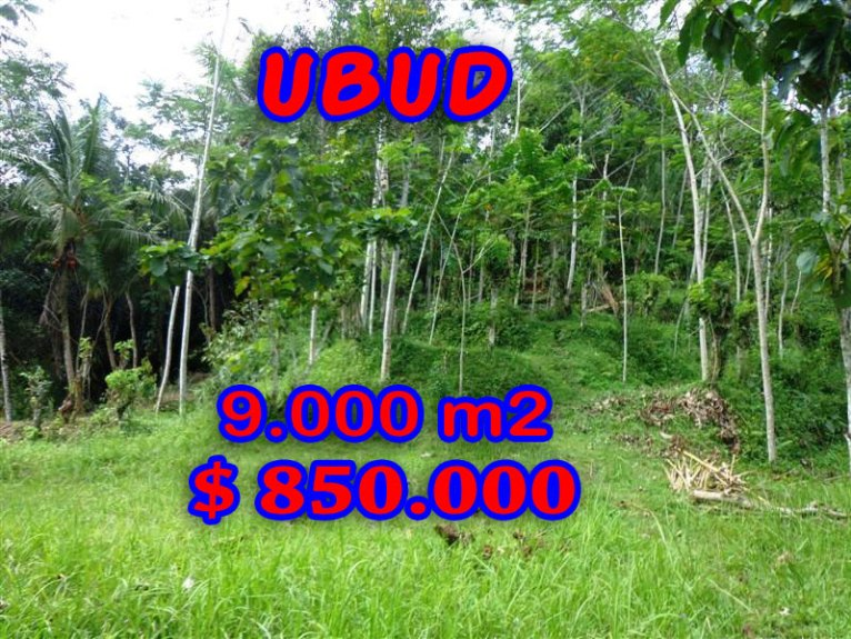 Astounding Property for sale in Bali, Ubud land for sale – TJUB239