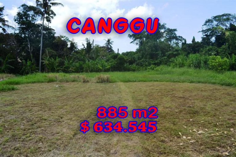 Land in Bali for sale, incredible view in Canggu Pererenan Bali – TJCG103