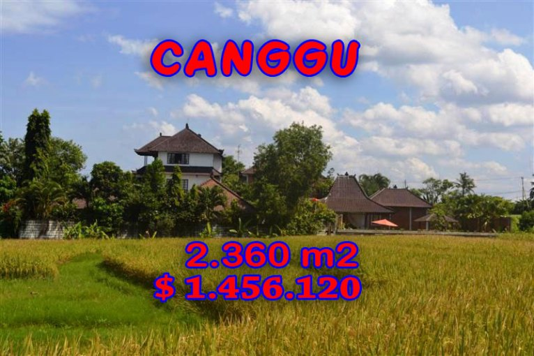 Land for sale in Bali, Exotic view in Canggu Bali – TJCG102
