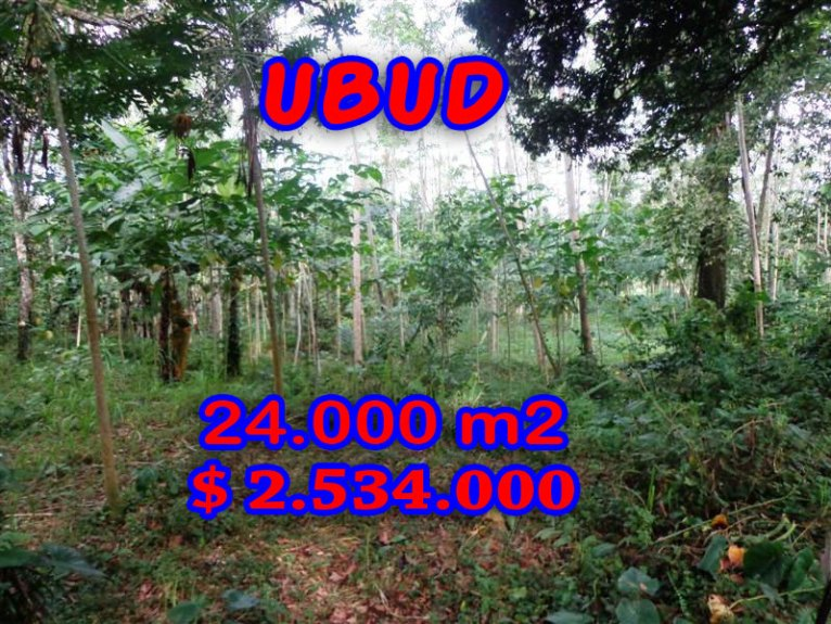 Stunning Land for sale in Bali, terraced rice paddy view in Ubud Bali – TJUB263