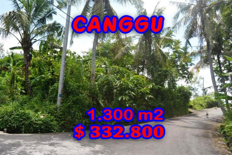 Land for sale in Bali, exotic view in Canggu Pererenan Bali – TJCG096