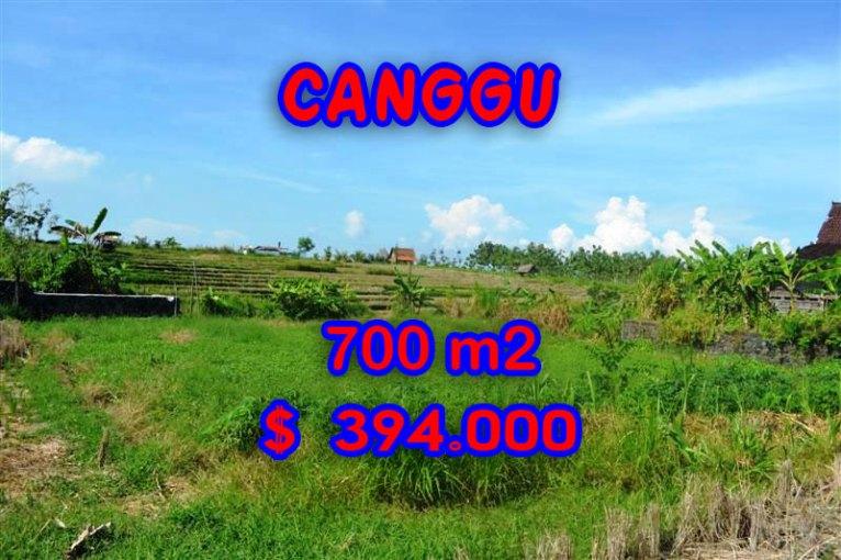 Land for sale in Bali, wonderful view in Canggu Bali – TJCG106