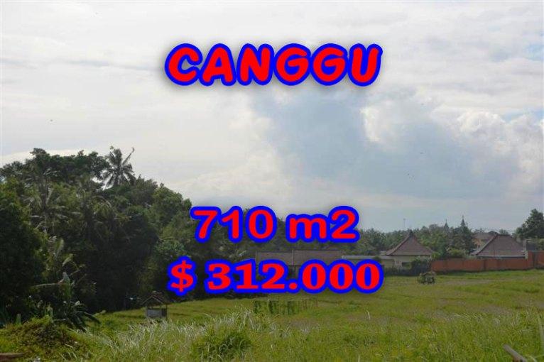 Land for sale in Bali, amazing view in canggu Berawa – TJCG110