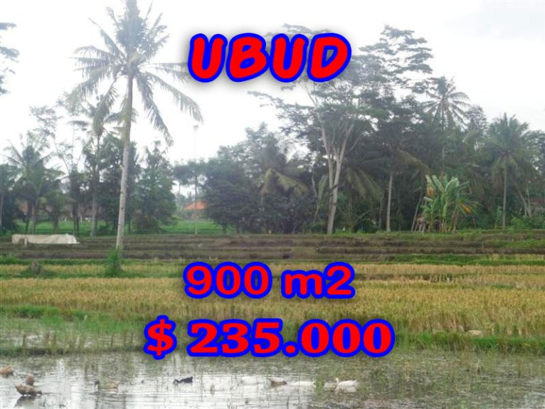 Land for sale in Bali, spectacular view in Ubud Bali – TJUB280