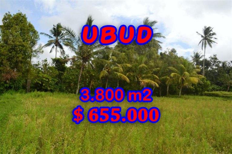 Land in Bali for sale, astounding view in Ubud Bali – TJUB271