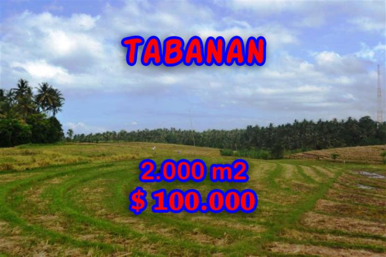 Stunning Land for sale in Bali, Mountain view in Tabanan Bali – TJTB055