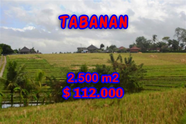Land for sale in Bali, magnificent view Tabanan Bali – TJTB056