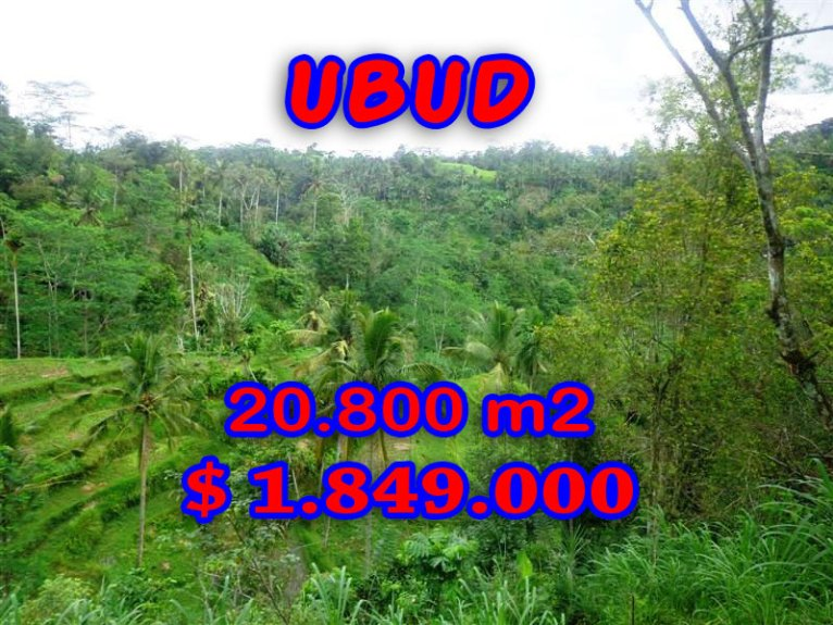 Land for sale in Bali, exceptional view in Ubud Tampak Siring – TJUB274