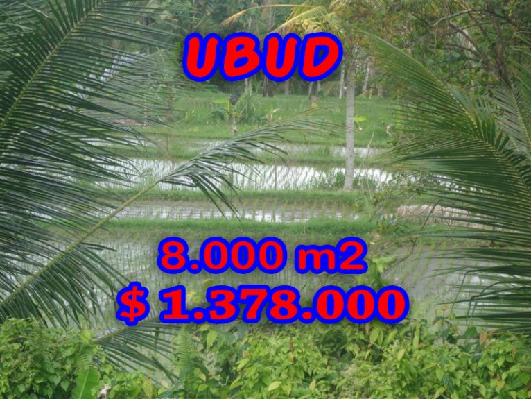 Land in Bali for sale, fantastic view in Ubud Bali – TJUB277