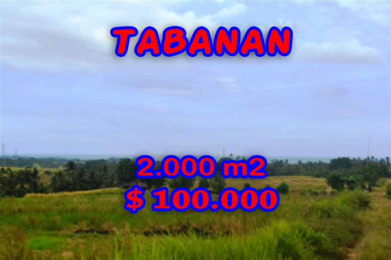 Spectacular Land for sale in Bali, terraced rice fields view in Tabanan Bali – TJTB057
