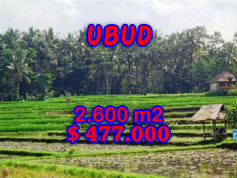 Exceptional Property in Bali, Land for sale in Ubud Bali – TJUB266