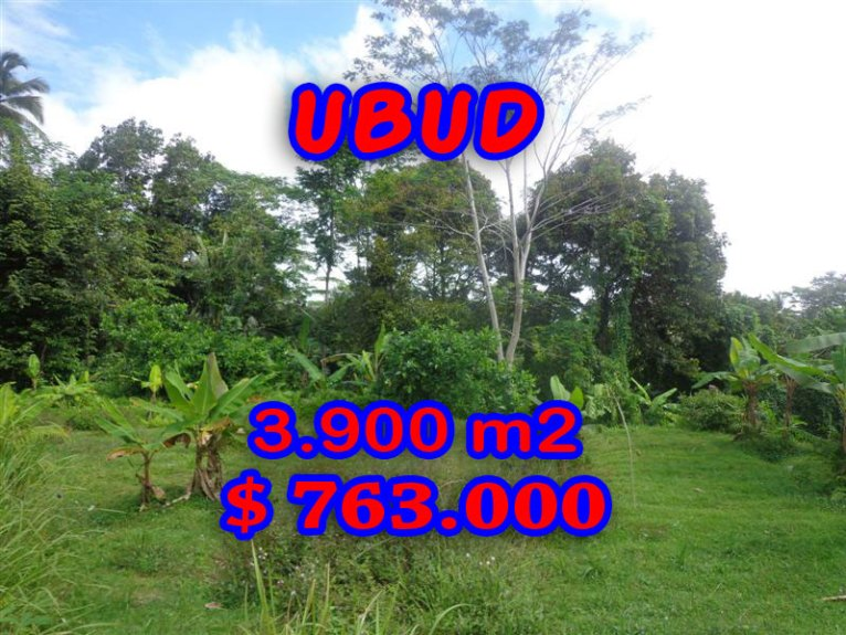 Stunning Property for sale in Bali, land for sale in Ubud Bali – 3.900 sqm @ $ 196