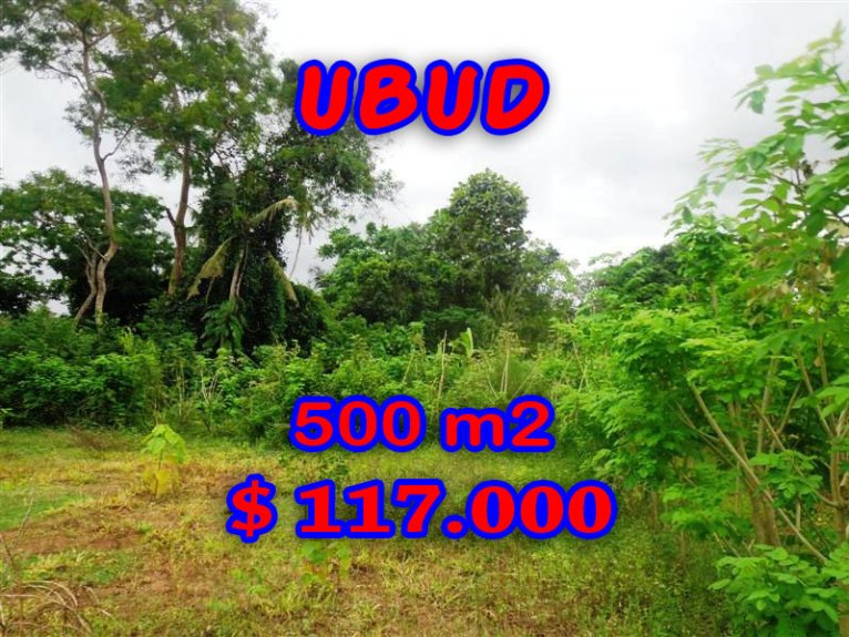 Land in Bali for sale, Spectacular view in Ubud Bali – TJUB283