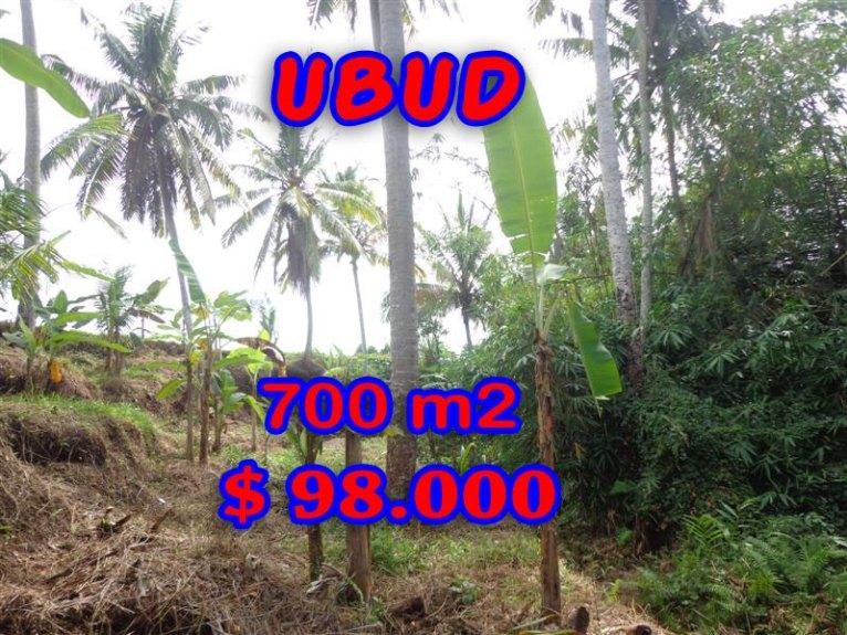 Land for sale in Bali, wonderful view in Ubud Bali – TJUB245