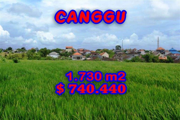 Land in Bali for sale, Fantastic Rice fields view  in Canggu Echo Beach – TJCG095