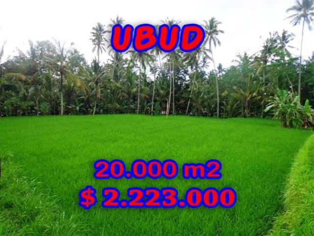 Property-for-sale-in-Ubud-land
