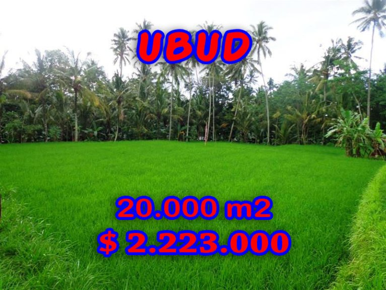 Land in Bali for sale, great view in Ubud Bali – TJUB286