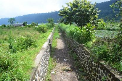 Land for sale in Bedugul Tabanan BaliLand for sale in Bedugul Tabanan Bali