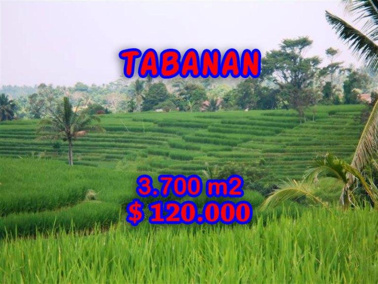 Land for sale in Bali, Exotic view in Tabanan Bali – TJTB051