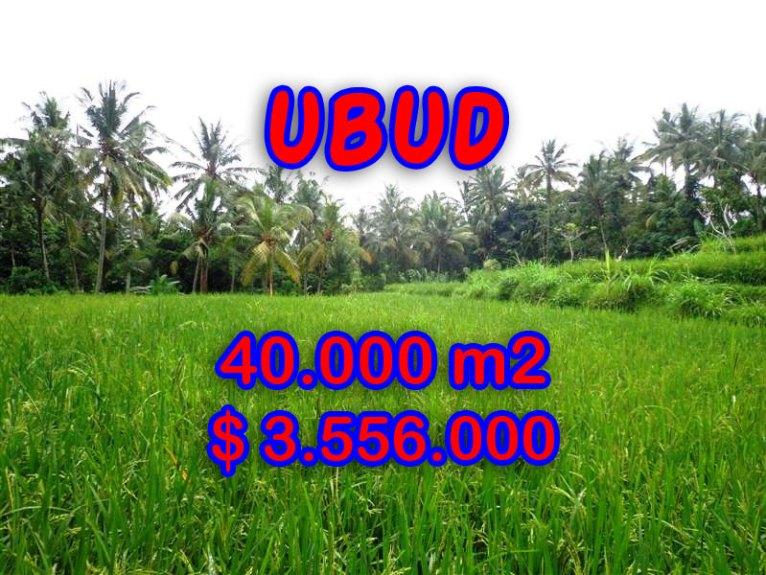 Amazing Land for sale in Bali, Stunning River side in Ubud Tampak siring – TJUB269