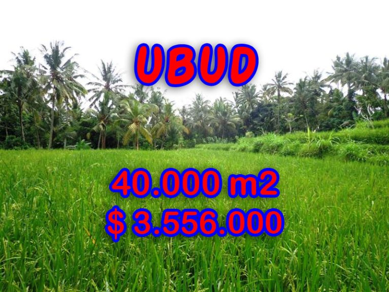 Amazing Land for sale in Bali, Stunning River side in Ubud Tampak siring – TJUB269
