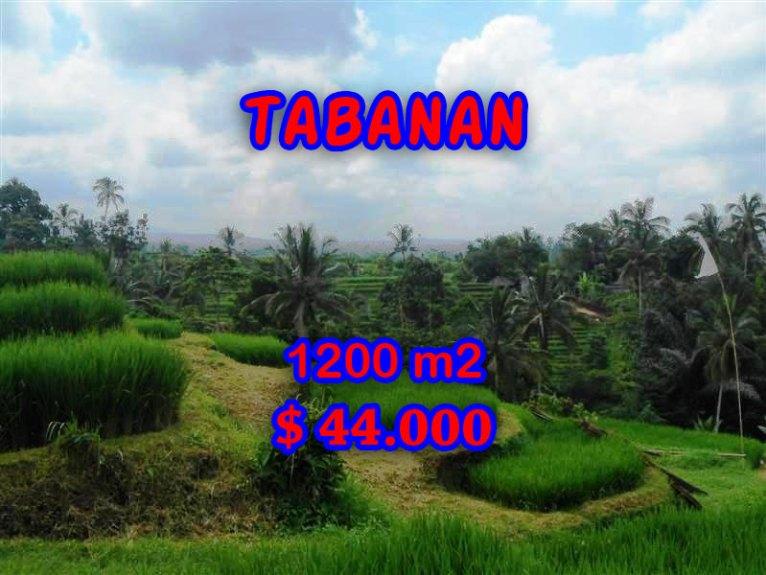 Wonderful Land in Bali for sale in Tabanan Penebel Bali – TJTB053