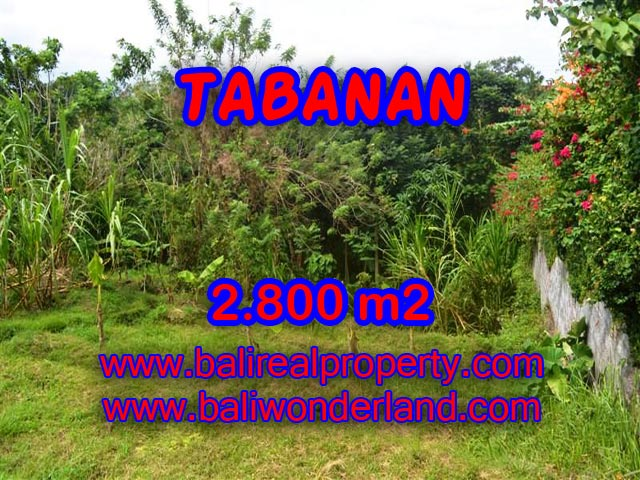 Land for sale in Tabanan Bali, Great view in TABANAN – TJTB070