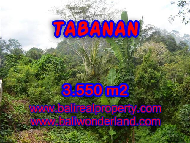 Land for sale in Bali, fabulous view in TABANAN – TJTB071