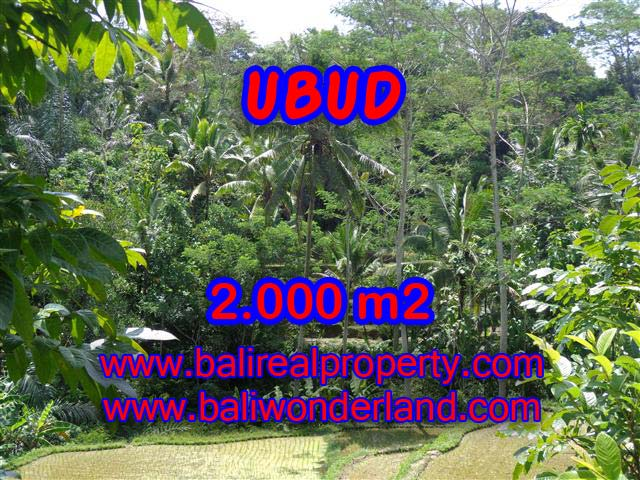 Land for sale in Bali, Fantastic view in Ubud Tegalalang – TJUB359