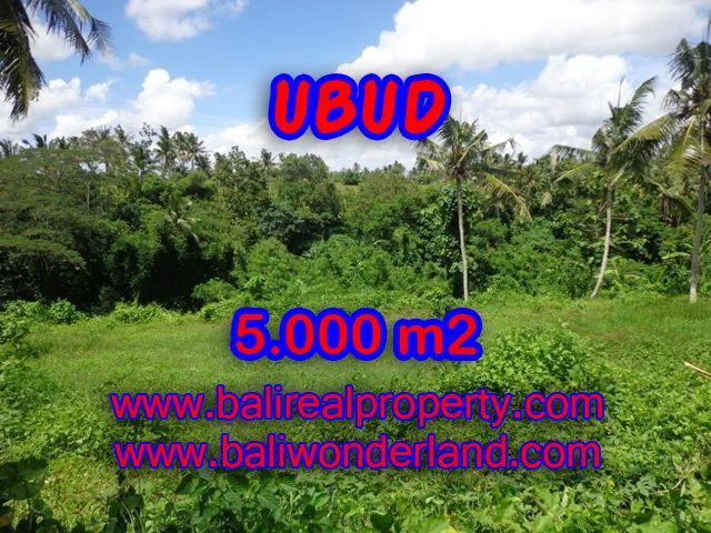 Magnificent Land for sale in Bali, paddy field and river view in Central Ubud Bali – TJUB353