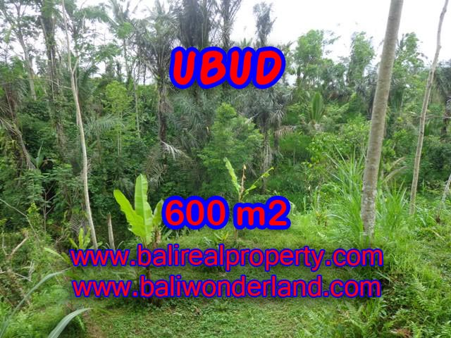 Land in Bali for sale, great view in Ubud Bali – TJUB346