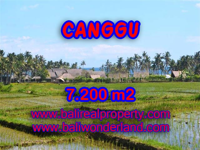 Fantastic Property for sale in Bali, land for sale in Canggu Bali  – 7,200 sqm @ $ 639