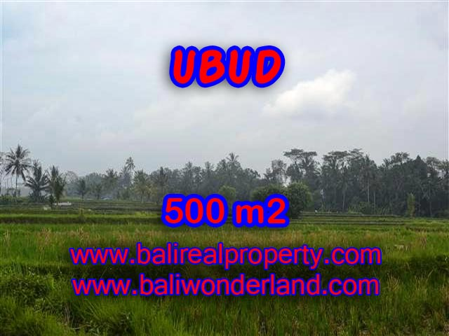 Stunning Land for sale in Bali, Mountain and paddy field view in Ubud Bali - TJUB363
