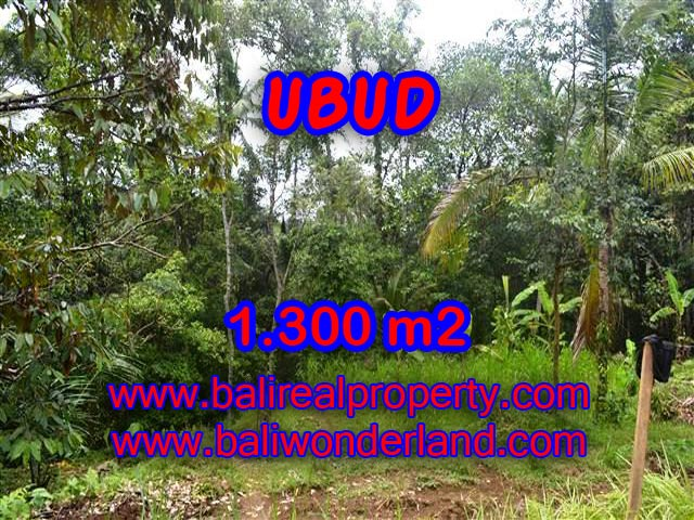 Land in Bali for sale, Outstanding view in Ubud Pejeng Bali – TJUB362