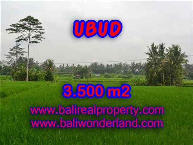 Land in Bali for sale, Stunning view in Ubud Bali – TJUB361