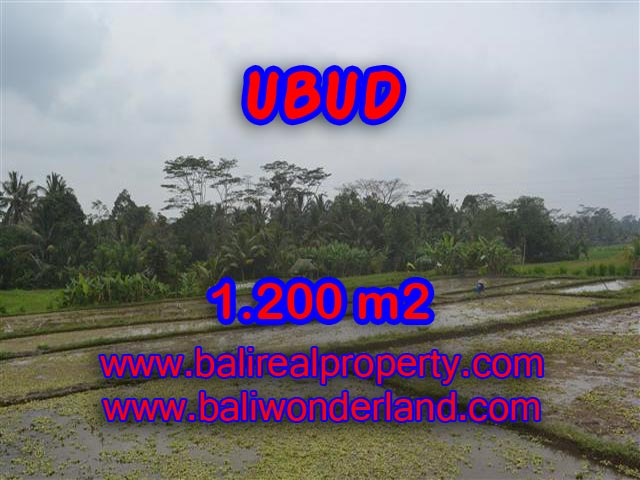 Land for sale in Bali, spectacular view in Ubud Bali – TJUB360