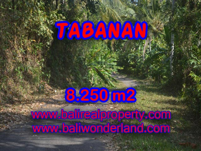 Property sale in Bali, Beautiful land for sale in Tabanan Bali – TJTB073