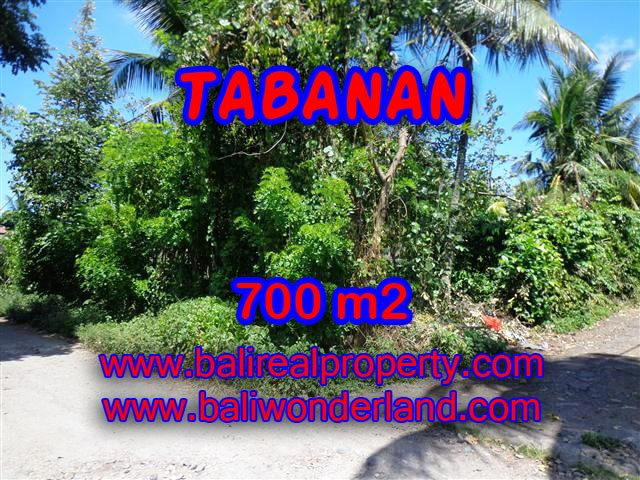 Land in Tabanan for sale, Stunning view in Tabanan Bali – TJTB107